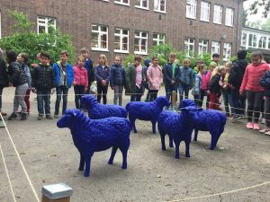 Blaue Schafe zu Besuch
